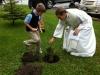 tree-planting-5-19-12-pic2