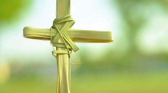 palm-cross